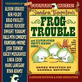 Sandra Boynton's Frog Trouble by Various Artists