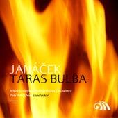 Janacek: Taras Bulba de Various Artists