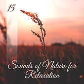 15 Sounds of Nature for Relaxation de Sounds Of Nature