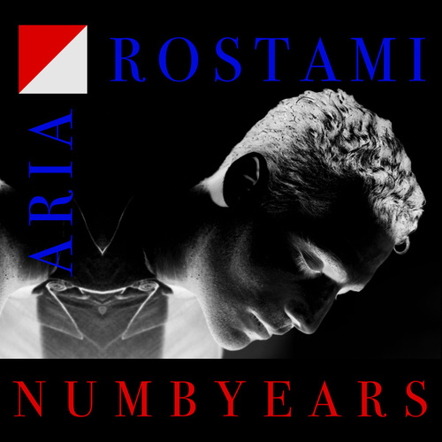 Numb Years by Aria Rostami