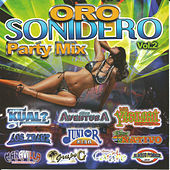 Oro Sonidero Party Mix; Vol. 2 by Various Artists