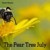 The Pear Tree July by Illusion Reunion