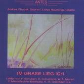 Im Grase lieg ich von Lidiya Naumova Andrea Chudak