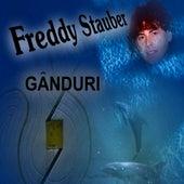 Romanian Pop - Ganduri by Freddy Stauber