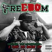 Freedom by Edo G.