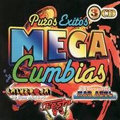 Puros Exitos - Mega Cumbias by Various Artists
