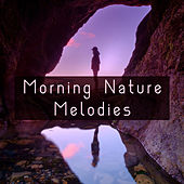 Morning Nature Melodies – Soft Music to Relax, Birds Sounds to Rest, Calm Walk in the Forest, Easy Listening de Sounds Of Nature