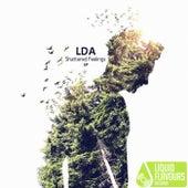Shattered Feelings. - Single by LDA