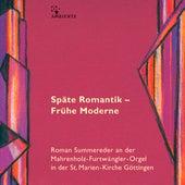Reger, Schmidt, Jarnach, David & Reda: Organ Works by Roman Summereder