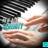 New Age Serenity by Various Artists