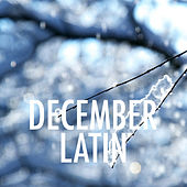 December Latin de Various Artists