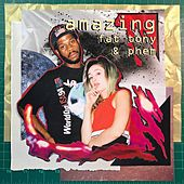Amazing (feat. Fat Tony) by Phem