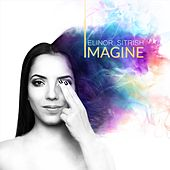 Imagine by Elinor Sitrish