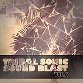 Tribal Sonic Soundblast,Vol.6 by Various Artists
