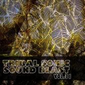 Tribal Sonic Soundblast,Vol.31 by Various Artists