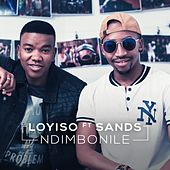 Ndimbonile von Loyiso