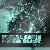 Tribal Sonic Soundblast,Vol.18 von Various Artists