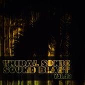 Tribal Sonic Soundblast,Vol.23 von Various Artists