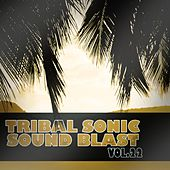 Tribal Sonic Soundblast,Vol.22 by Various Artists