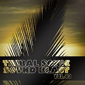 Tribal Sonic Soundblast,Vol.43 by Various Artists