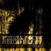 Tribal Sonic Soundblast,Vol.41 by Various Artists