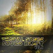 Tribal Sonic Soundblast, Vol. 1 by Various Artists