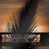 Tribal Sonic Soundblast,Vol.28 de Various Artists