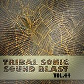 Tribal Sonic Soundblast,Vol.44 de Various Artists