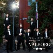 You'll Never Walk Alone on Valborg de Gosskören