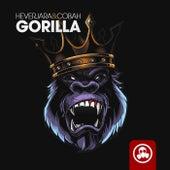 Gorilla de COBAH Hever Jara