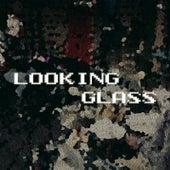 Looking Glass (feat. Dana Hawkins) by Evan Marien
