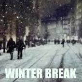 Winter Break de Various Artists