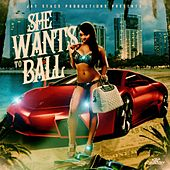 She Wants To Ball (clean) von Jay Stacs