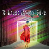 38 Natures Artistic Sounds de Nature Sounds Artists