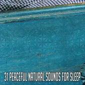 31 Peaceful Natural Sounds For Sleep by Deep Sleep Music Academy