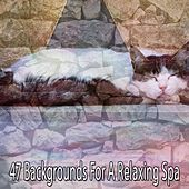 47 Backgrounds For A Relaxing Spa von Best Relaxing SPA Music