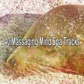 40 Massaging Mind Spa Tracks de Best Relaxing SPA Music