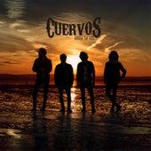 Sobra la Luz by Los Cuervos