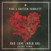 Bad Love (Qulinez Remix) by Caitlyn Scarlett
