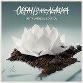 Hikari (Instrumental Edition) by Oceans Ate Alaska