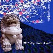 'not Dog...Snow-Lion!' de Various Artists
