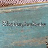 25 Sleep Inducing Stormy Recordings de Thunderstorm Sleep