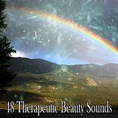 48 Therapeutic Beauty Sounds von Massage Therapy Music
