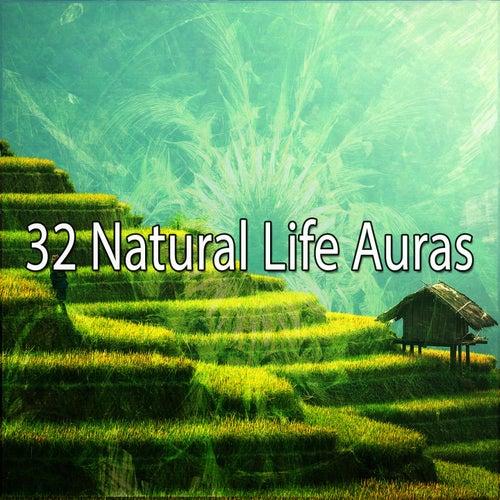 32 Natural Life Auras by Yoga Music