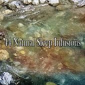 44 Natural Sleep Infusions by Smart Baby Lullaby