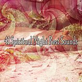 41 Spiritual Night Rest Sounds de White Noise Babies