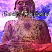 45 Sounds For A Relaxing Experience von Massage Therapy Music