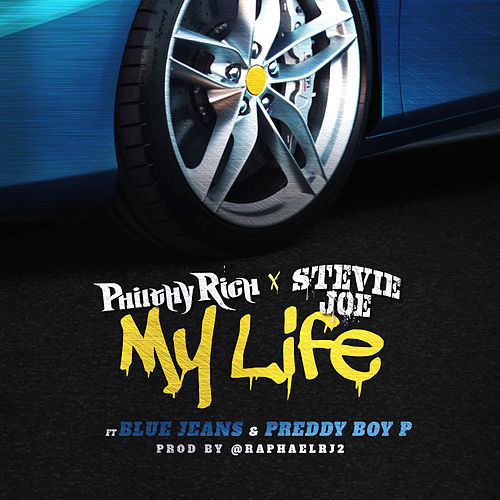 My Life by Stevie Joe