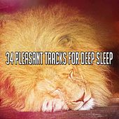 34 Pleasant Tracks For Deep Sleep by Nature Sound Series