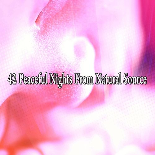 42 Peaceful Nights From Natural Source by Ocean Sounds Collection (1)